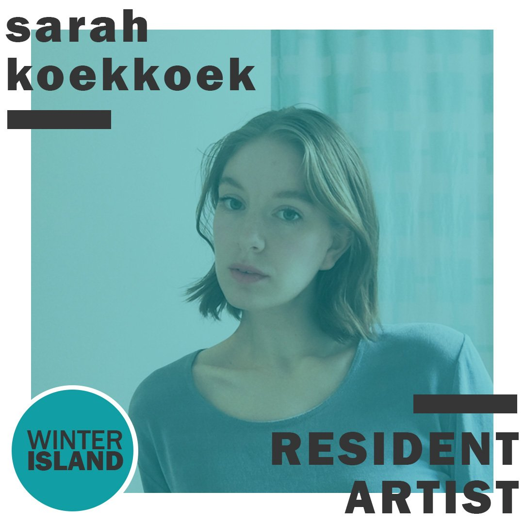 Artscape Gibraltar Point Winter Island Artist In Residence 2020 sarah koekkoek