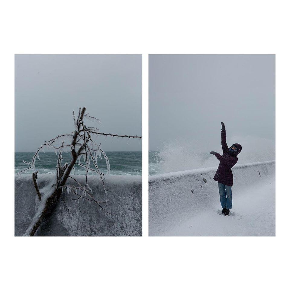 Artscape Gibraltar Point Winter Island Artist Residency sarah koekkoek